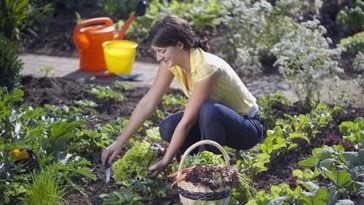 Grow fruit and vegetables