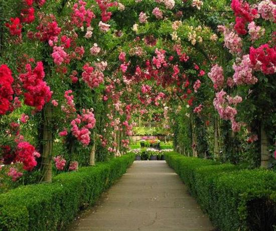 Romantic-Garden-Arbors-16