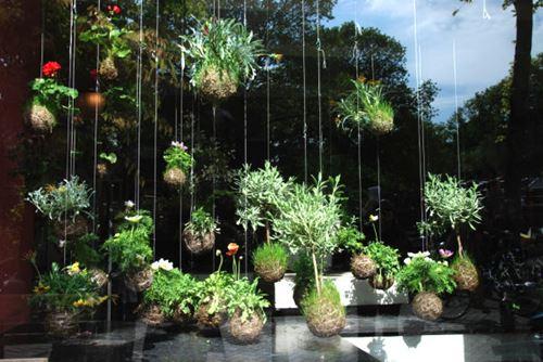 Hanging Garden Ideas 21 most attractive diy hanging garden ideas to break the monotony in every space Hanging Garden Idea