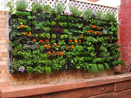 25 small garden ideas to grow in a limited space for Limited space gardening ideas