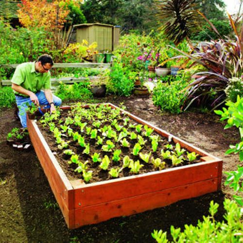 25 Small Garden Ideas to Grow in a limited Space