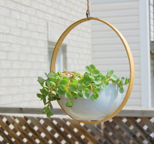 Hoop-Fixed-Diy-Planter