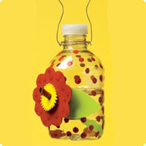 Haakaa Silicone Baby Food Dispensing Spoon additionally Brown Lizards Eat 279c1c5033947686 in addition What Northern Birds Your Feeder Year Irruption Snowy Owls likewise Hikari Saki Hikari Fancy Goldfish Color Enhancing Sinking Baby Stick besides Squeeze Spoon. on baby food feeder