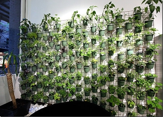 Utilizing Vertical Gardening and Container Gardening