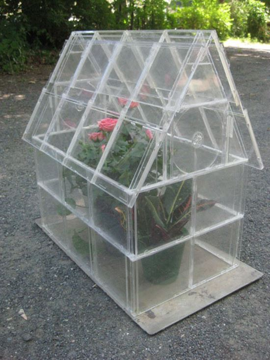 CD COVER GREENHOUSE