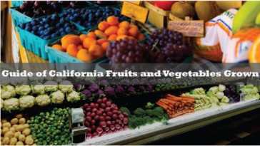 Guide-of-California-Fruits-and-Vegetables-Grown
