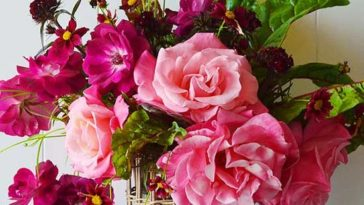 Garden Rose and also Swiss chard floral arrangement